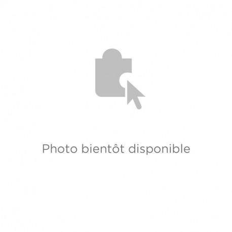 Brosse Rectangulaire P.1166A